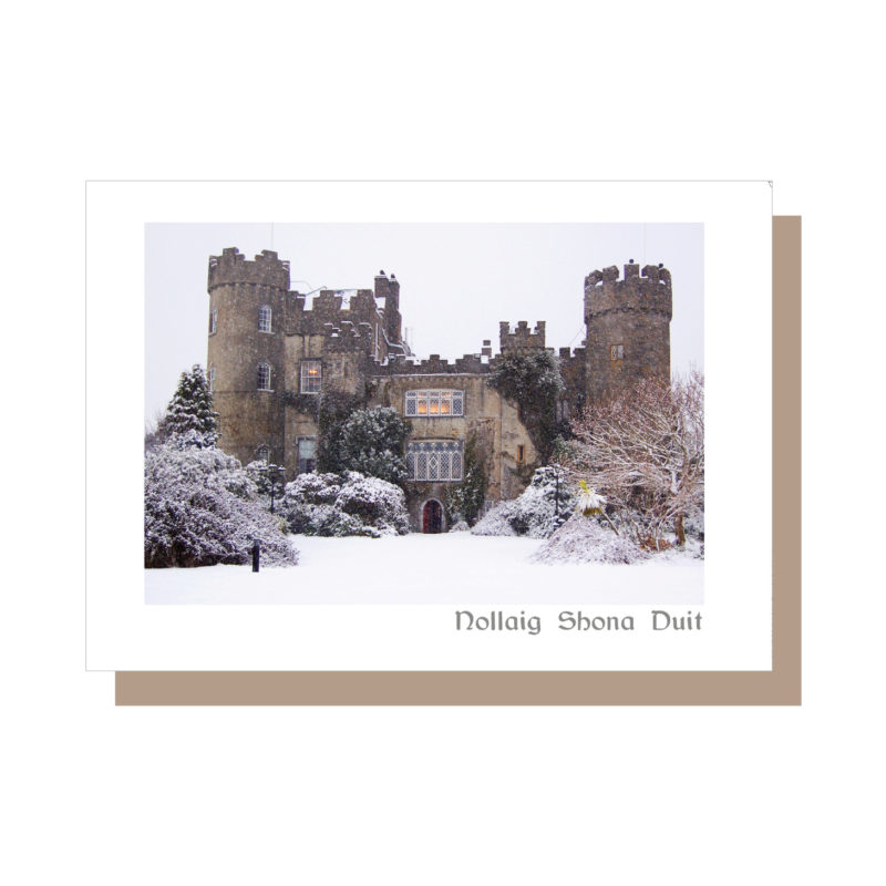 Malahide Castle Dublin Greeting Card by Catherine Dunne
