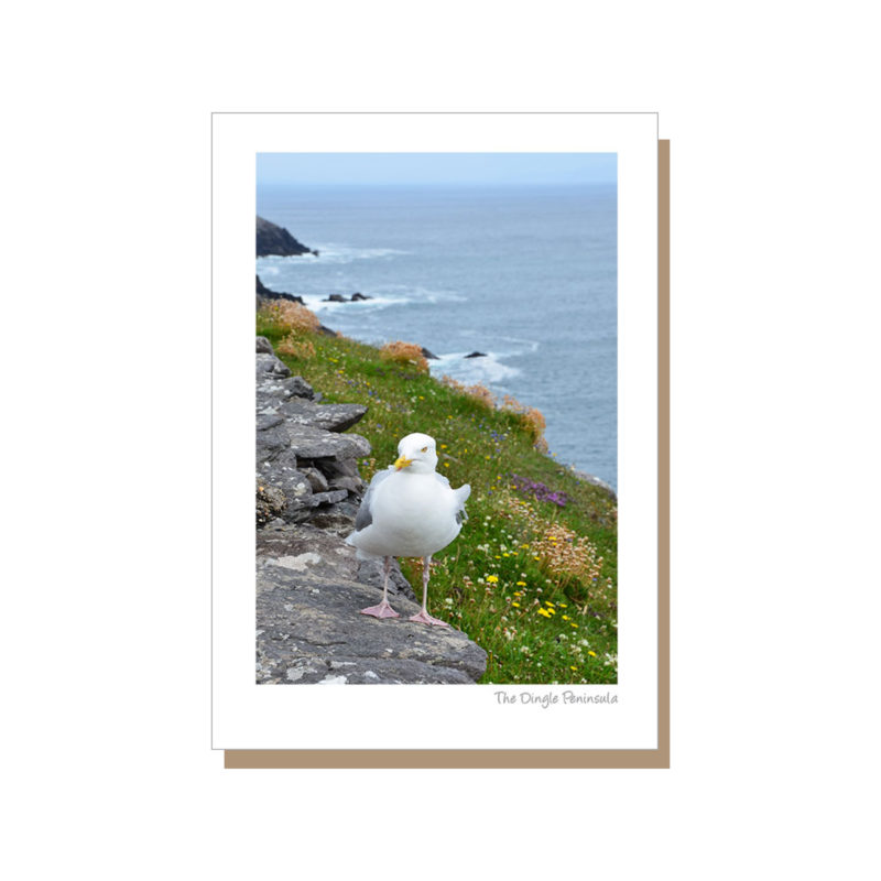 Dingle Peninsula on the Wild Atlantic Way