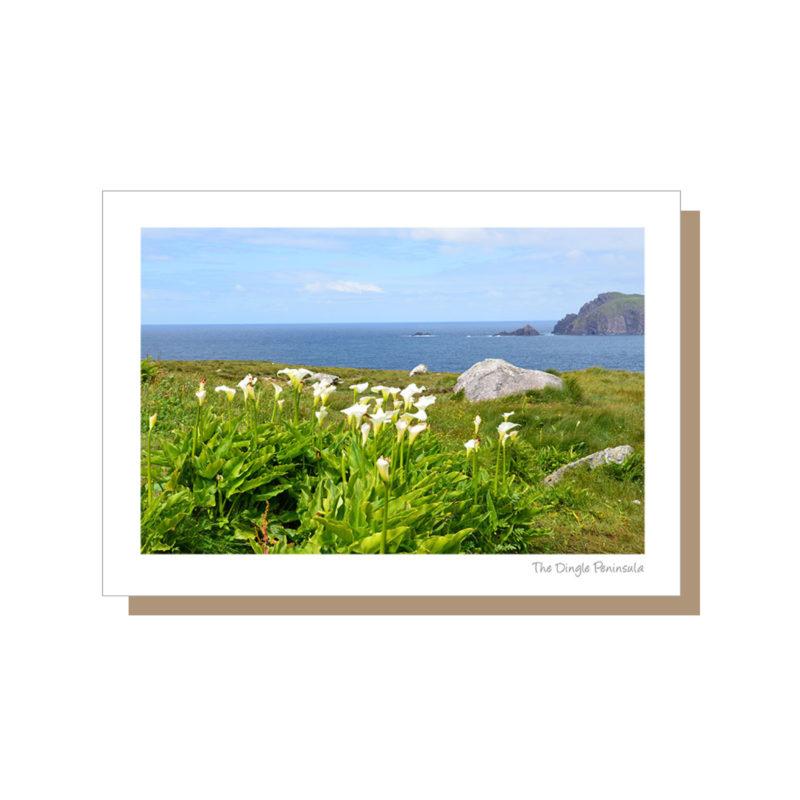 Dingle Peninsula on the Wild Atlantic Way Ireland
