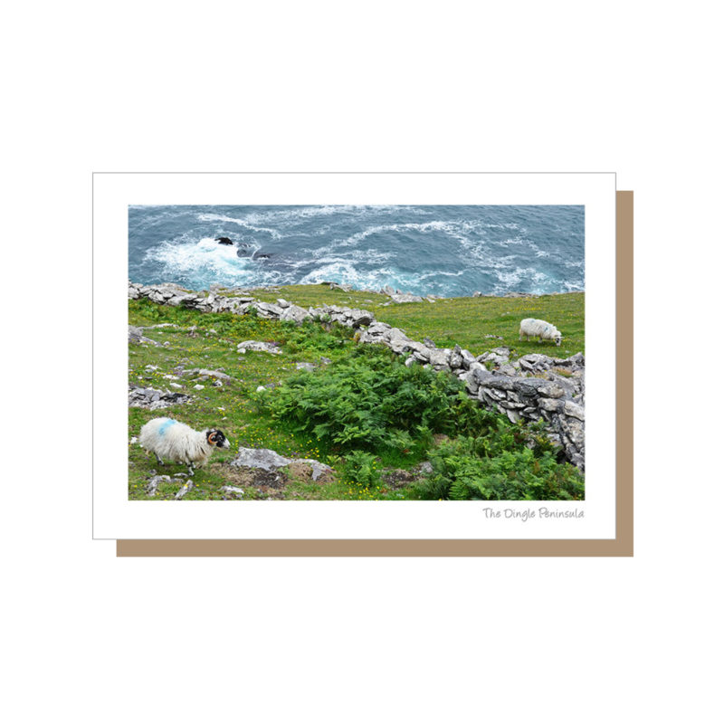 Dingle on the Wild Atlantic Way