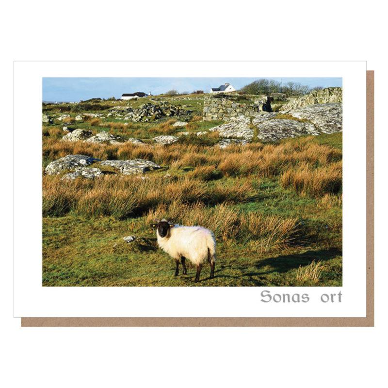 sonas ort card irish sheep connemara