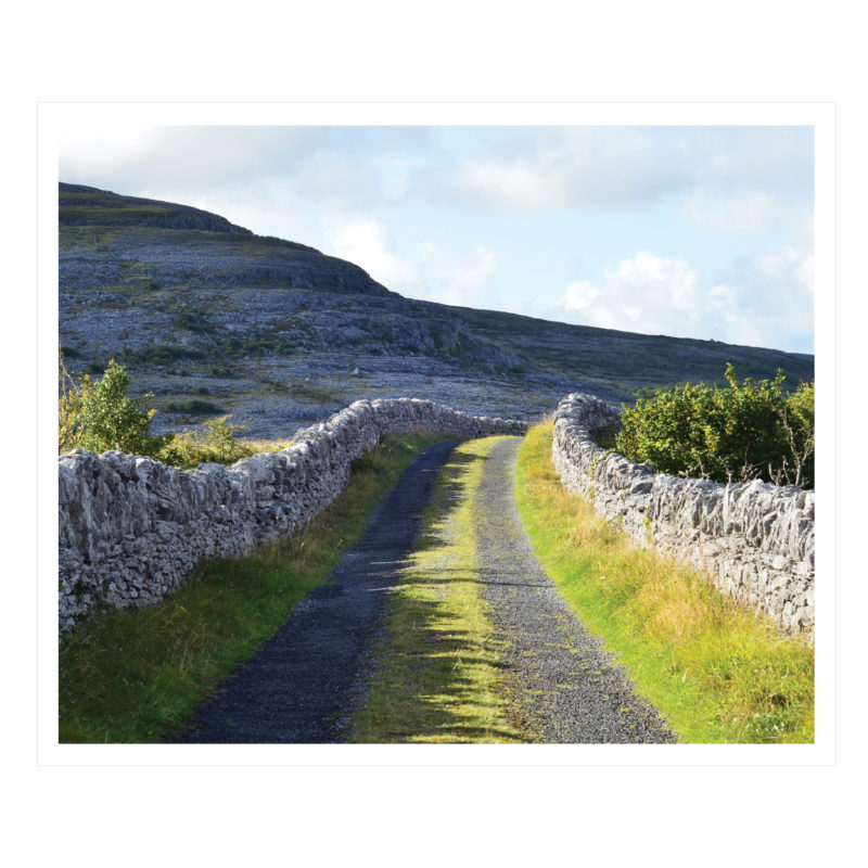the green road in county clare, ireland by catherine dunne