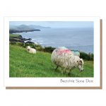 breithla sona duit card irish birthday dingle sheep card