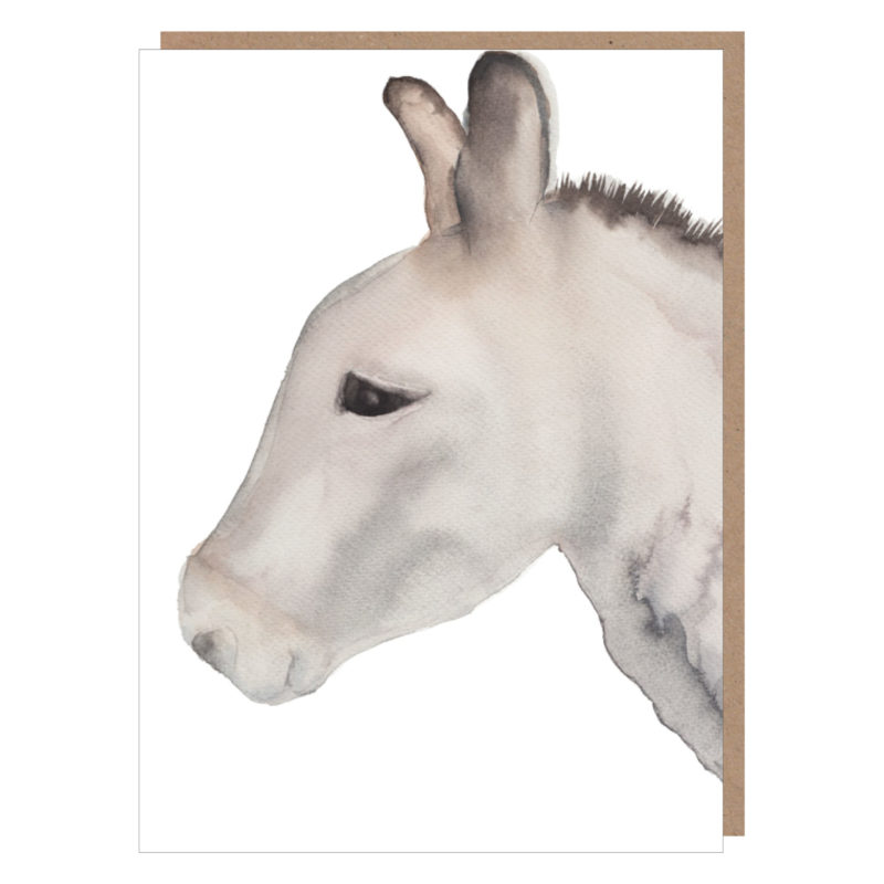 donkey card ireland