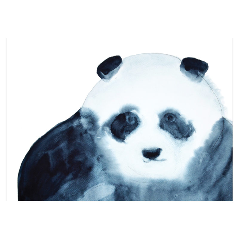panda by catherine dunne