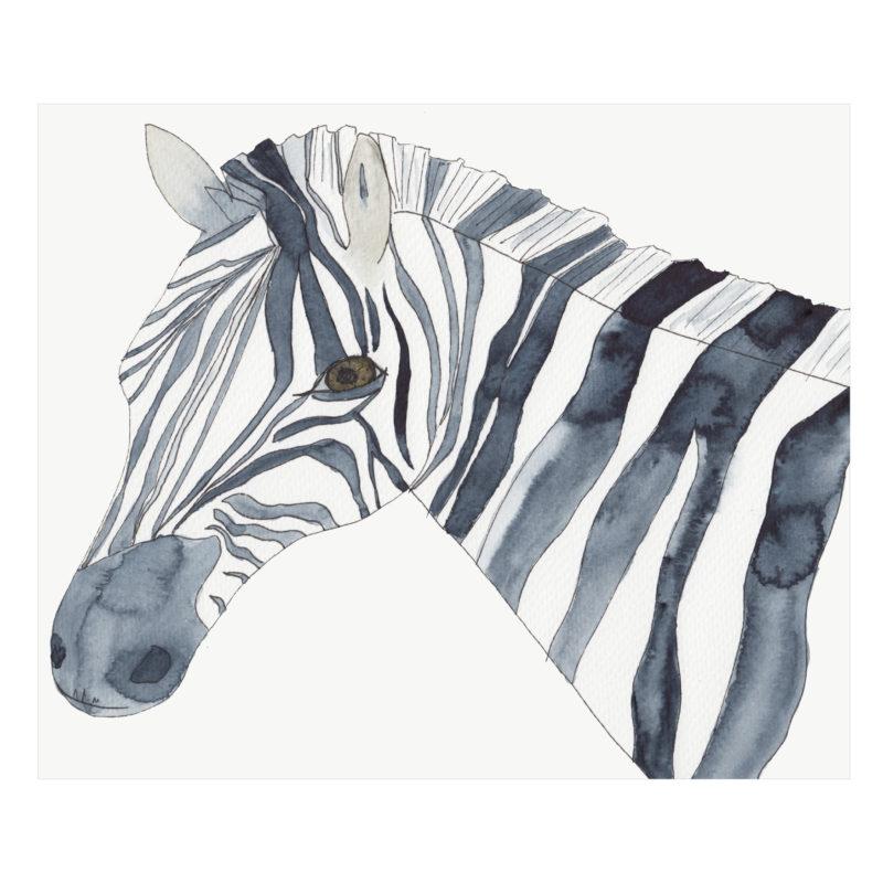 Zebra by Catherine Dunne